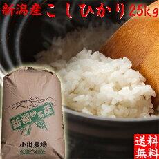 コシヒカリ25kg(送料無料)