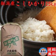 「送料無料」コシヒカリ25kg(無洗米)