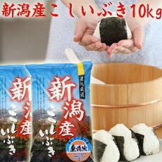 こしいぶき10kg(無洗米)