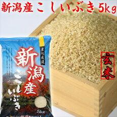 こしいぶきの袋(玄米)