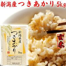 つきあかりの袋(玄米)