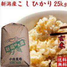 玄米コシヒカリ25kg(送料無料)