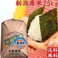 業務用米25kg(無洗米)