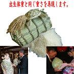 3kgの米俵に2500g〜3000g用(出生体重に合わせて作成します) ウエイトライス