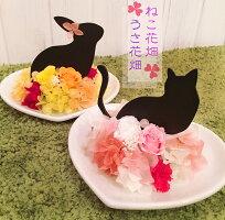 プリザーブドフラワー【ねこ花畑】黒猫好きさんへ、クリスマスプレゼント