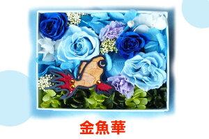【送料無料】水槽をみているような、楽しめるお花♪【送料無料】金魚華スクエア【花】 アクア...