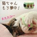 【送料無料】マタタビと鈴入り!猫ちゃん大喜びのおもちゃですまたたび 猫のおもちゃ 送料無...