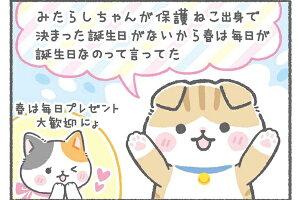 猫フラワーリースプリザーブドフラワーねこ好きおもしろいギフトネコ花母の日入学祝い退職祝いにゃんだふるーるプレゼントホワイトデーお返しネコカフェ開店祝いねこたつ猫助けネコ型