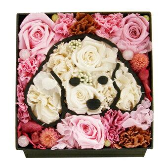 【送料無料】愛犬トイプードル プリザーブドフラワー 父の日 クリスマス【誕生日祝い・結婚祝い、引越し祝い】ペットのメモリアル 母の日
