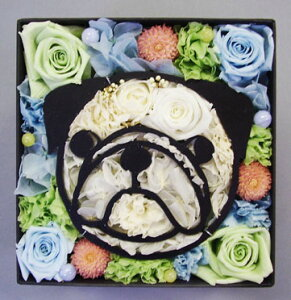 【送料無料】パグのお顔がプリザーブドフラワーに♪【送料無料】愛犬パグ プリザーブドフラワ...