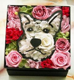 【送料無料】愛犬シュナウザー プリザーブドフラワー【誕生日プレゼント 結婚祝い 引越し祝い】ペットのメモリアル クリスマス 父の日 母の日 ペット好き お見舞い