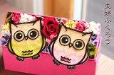 プリザーブドフラワー フクロウ(梟)好き 夫婦ふくろうは結婚のお祝いや、敬老の日 ギフトに。不苦労として日本でも人気の動物 縁起物でお祝い各種に対応します 【結婚記念日 還暦祝い 退職祝い 新築祝い 開店祝い 誕生日祝い 父の日 母の日 古稀祝い 喜寿祝い】酉年