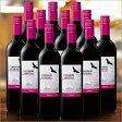 【送料無料】コンドール・アンディーノ・シラーズ12本セット(2015)(アルゼンチン/赤・FB)750ml[赤ワイン][ワインセット][赤:フルボディ] 【7777382】