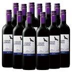 【送料無料】コンドール・アンディーノ・マルベック12本セット(アルゼンチン 赤 フルボディ) 赤ワイン ワインセット 【7777380】