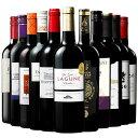 【 特別 送料無料 】 1本たったの544円(税別) 3大 銘醸地 入り 世界 の 選りすぐり 赤ワイン 11本 セット 85弾【7792477】 | 金賞 飲み比べ ワイン ワインセット wine wainn ボルドー フランス イタリア スペイン お買い得 ギフト