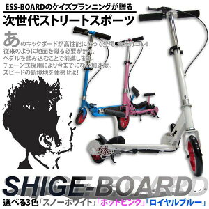 スケートボードを超えた次世代アイテムバランス感覚にチャレンジSHIGE-BOARD