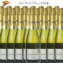 エレタット・エル・パドルエル ブリュット 16本 スパークリングワイン 750ml 辛口 スペイン ワイン セット スパークリング 泡 c