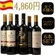 アクアヴィタエ厳選トリプル金賞受賞ワインセレクト『スペイン極うま赤ワイン6本セット』