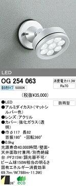 オーデリック 屋外LEDスポットライト OG254063