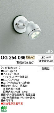 オーデリック 屋外LEDスポットライト OG254066