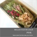 ドライフラワー 花束 ベル フルール ジョリー ピンク Belles Fleurs Jolie PINK セット ブーケ スワッグ 壁飾り 2