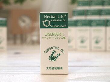 生活の木 エッセンシャルオイル ラベンダー(フランス産) 3ml【ポイント10倍/08-449-3290】