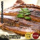 愛知 三河産 特大 鰻蒲焼 250g×3尾セット 国産 蒲焼