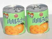 みかん缶詰