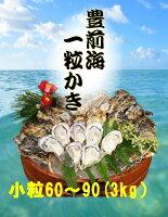 【送料無料】【福岡県産】豊前海一粒牡蠣殻付きかき/牡蠣3kg(小粒/60〜90個入り)【産地直送】