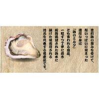 【福岡県産】豊前海一粒牡蠣殻付きかき/牡蠣3kg(小粒/60〜90個入り)【産地直送】