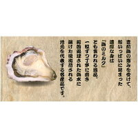 【福岡県産】豊前海一粒牡蠣殻付きかき/牡蠣3kg(大粒/24〜45個入り)【産地直送】