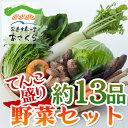 【送料無料対象商品】割引後価格1800円!あさくらの旬の野菜てんこ盛りセット 13品