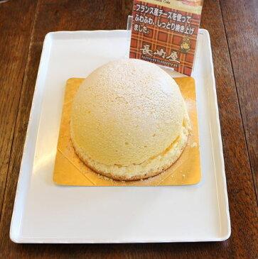 【送料無料】ズコットチーズケーキ