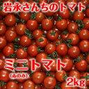 Iwanaga_tomato_08