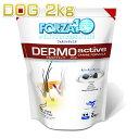 犬用 フォルツァ10 デルモ アクティブ 小粒 2kg 皮膚・被毛ケア 成犬用 シニア犬対応ドライ ドッグフード 食物アレルギー対応 フォルツァディエチ FORZA10 正規品