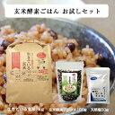 【玄米酵素ごはんお試しセット 生きている玄米3kg + 玄米酵素ブレンド150g + 天然塩5...