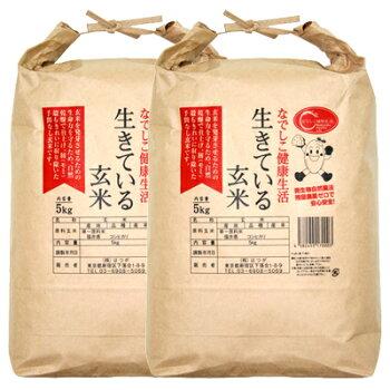 生きている玄米10kg【定期購入】