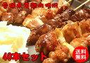 愛媛県産鶏肉使用 焼鳥串盛り合わせ 10本×4パック 40本(ももねぎ8、もも8、肝8、砂肝8、皮8)たれ、塩こしょう付き - ナジャ工房
