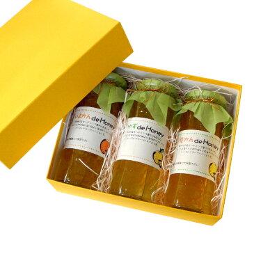 果実のはちみつ漬 3種(いよかん/ゆず/夏柑)セット − サンビーフーズ