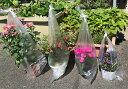 フラワーポッド用 半透明 レジ袋 フリーバッグ 植木鉢用 大 30×75cm 2,000枚 − 福助工業 2