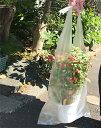 フラワーポッド用 半透明 レジ袋 フリーバッグ 植木鉢用 大 30×75cm 2,000枚 − 福助工業 3