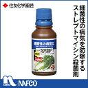 ストマイ液剤20 100ML
