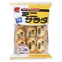 三幸製菓 ミニサラダしお味 24枚