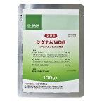 BASFジャパン シグナムWDG 100g