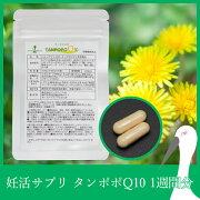 タンポポ ミトコンドリア コエンザイム タンポポサプリ ビタミン カプセル