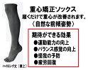 重心ソックスJushinSoxハイロング(野球向き)