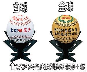 思い出を!! 野球記念ボール...