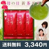 【送料無料】《母の日プレゼント》お母さんありがとう新茶100g×3本 鹿児島茶ギフト ミニカーネーション(造花)付