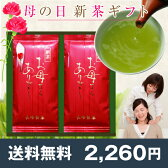 【送料無料】《母の日プレゼント》お母さんありがとう新茶100g×2本 鹿児島茶ギフト ミニカーネーション(造花)付