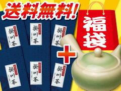 静岡県掛川茶(深蒸し茶)で今すぐ!元気はつらつ緑茶生活はじめませんかNHKためしてガッテンで...